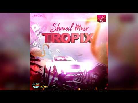 Shaneil Muir - Tropix (Official Audio)