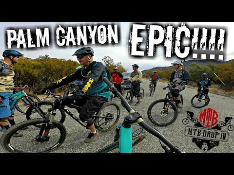 We Almost Died! Mountain Biking Palm Canyon Epic | Epic Mountain Bike Trail | Epic In The Dessert