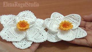 Crochet 3d Narcissus Flower Tutorial Part Crochet Daffodil