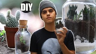 DIY #2: 3 INCRÍVEIS TERRÁRIO FECHADO