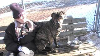 BEAR GOES HOME 1-4-12