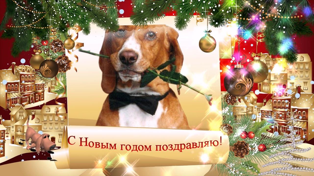 Детские поздравление в новый год собаки
