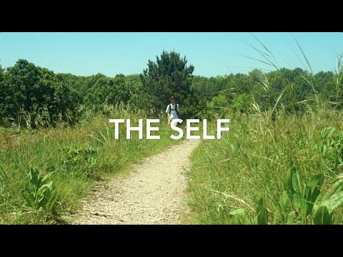 The Self (short horror film): A hiker lost in the woods confronts his deepest fears...  The Self is a psychological horror short film written by college student Luke Larson, and co-produced by high school student Tuomas Sivula. They are neighbors in Saint Paul's East Como Neighborhood. The duo formed Fiasco Motion Pictures in the summer of 2015. Another short(er) film is in the works.  The film was shot over a few days on location in Roseville's Reservoir woods with our friend, John, playing Luke's double.  The soundtrack is composed entirely of backwards samples of Luke's whistles and heavily effected natural sounds.