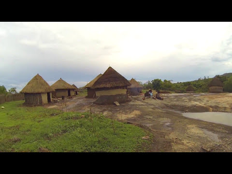 South Africa Women Tribe Dance