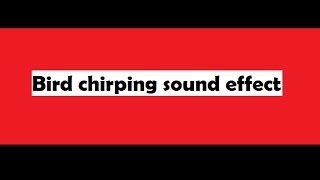 sound effect bird chirping