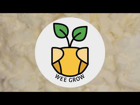 School of the Art Institute of Chicago - Wee Grow