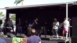Pato Banton @ 2014 Rolando Street Fair (Smooth Jazz Family)