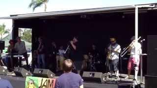 Pato Banton @ 2014 Rolando Street Fair (Smooth Jazz Family)