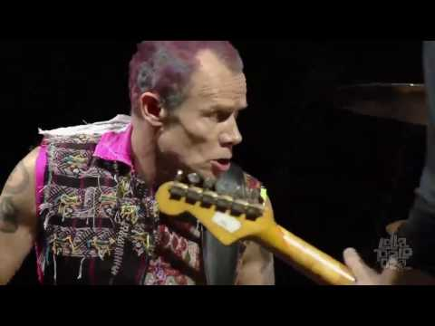 Red Hot Chili Peppers  Intro + Cant Stop   Lollapalooza Chicago 2016 HD