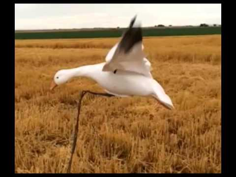 Repeat Snow Goose Decoy Son Of Stalker Machine W/Double