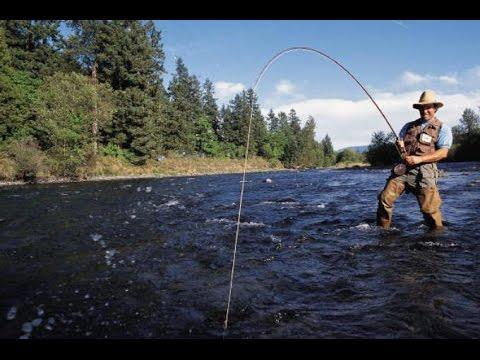 болотники только на рыбалку