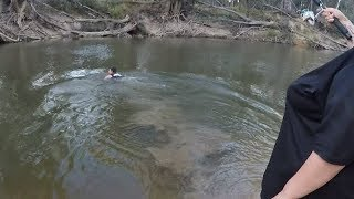 Murray cod fishing, swimming for my wifes snagged big Murray cod