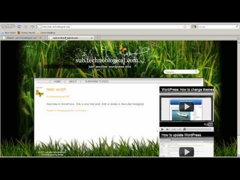 Web Site By WordPress: Widgets And Plugins