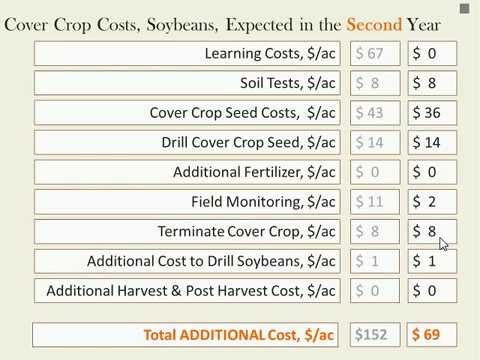 Cover Crops: Why grow a crop you don't sell?