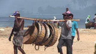 Sri Lanka Part 1 - Negombo and Colombo