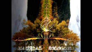 Cyber Motion - Nirvana