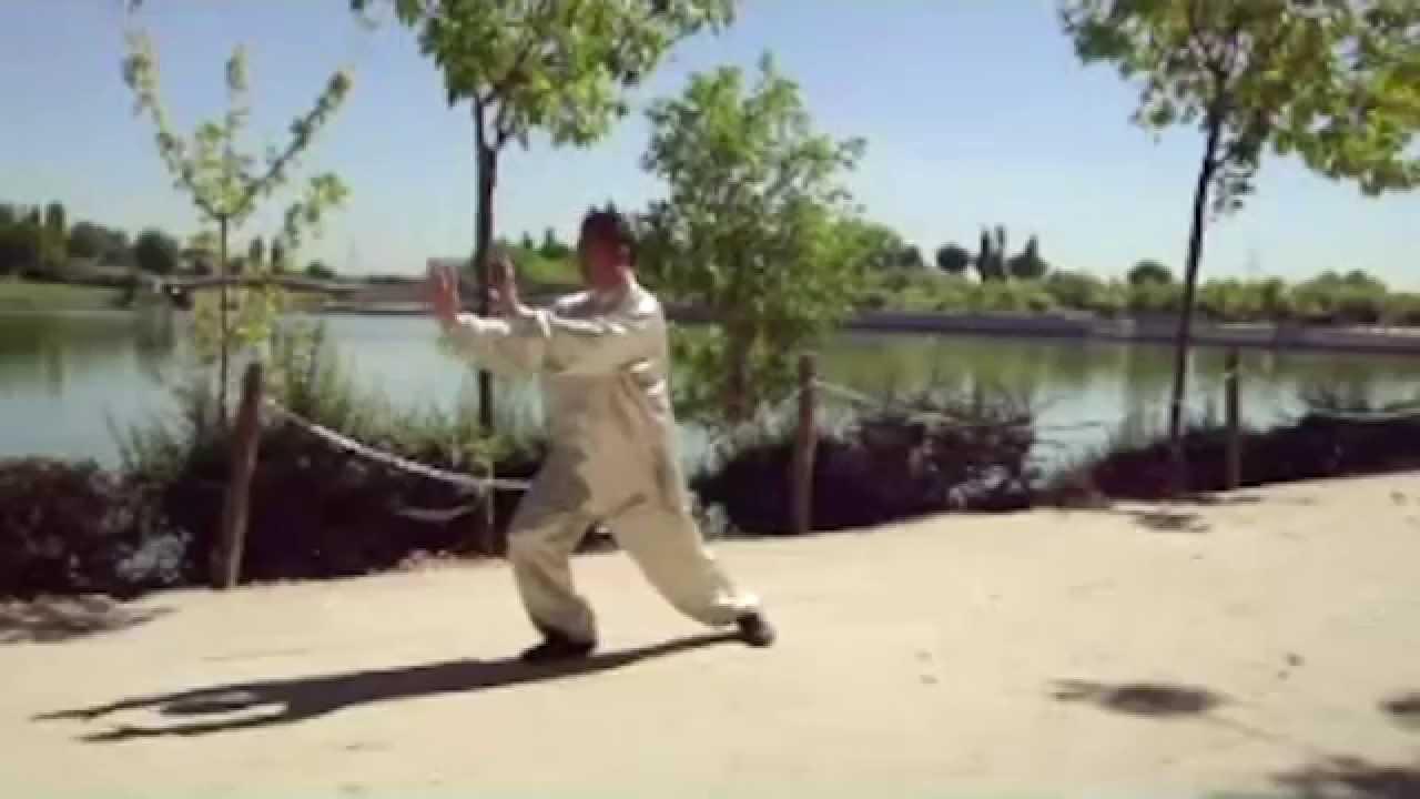 Los pasos b sico de Tai Chi para principiantes