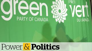 Green Party says 11 staff given layoff notices