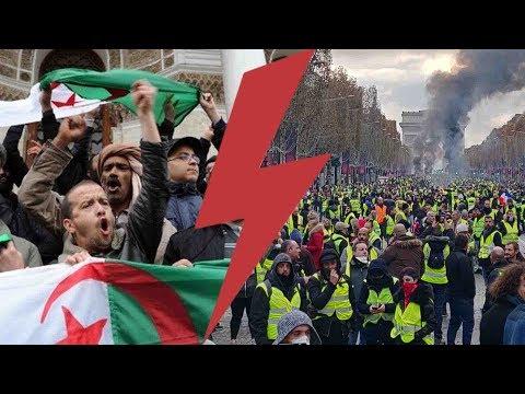I-Média n°241 Algérie ou Gilets Jaunes, les médias ont choisi