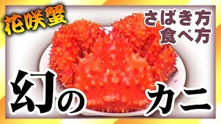 【幻のカニ】この味を知らずに死ぬのは損!!【食べ方さばき方】【北海道】