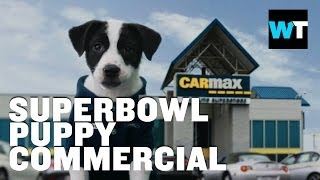 Carmax Super Bowl Puppy Commercial | What's Trending Now