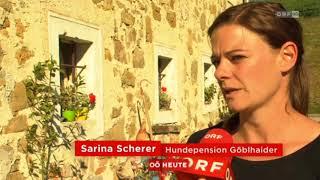 Tierrettung vor dem Aus ORF Oberösterreich heute