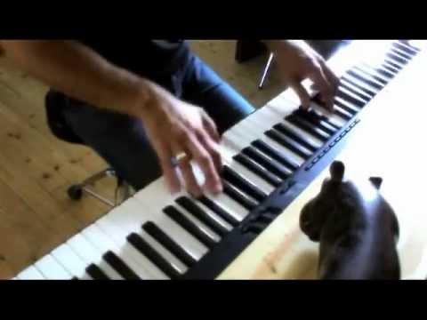 Joe Satriani - Rubina (Piano cover)