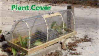 Mini Greenhouse Plant Cover