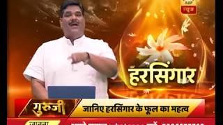 GuruJi With Pawan Sinha: Know The Benefits Of Harsingar Aka Night Jasmine