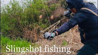 РЫБАЛКА НА САЗАНА ОНЛАЙН, SLINGSHOT FISHING ONLINE