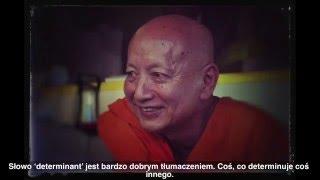 The meaning of Sankhara - B. Punnaji, B. Dhammavuddho ( Znaczenie Sankhary )