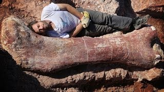 NEW LARGEST LAND ANIMAL EVER DISCOVERED!!