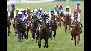 Melbourne Cup 2017 Live - 2017 Melbourne Cup Preview - Melbourne Cup Results 2017