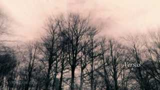 If These Trees Could Talk  - The First Fire HD 1080p  ☮