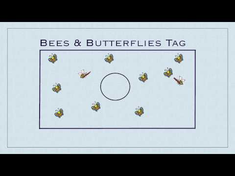 P.E. Games - Bees & Butterflies Tag