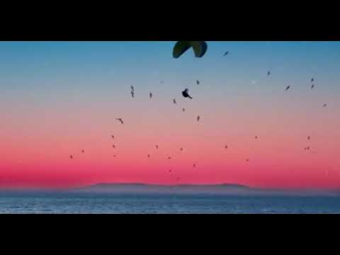 Adista - Ku Tak Bisa (Official Audio).