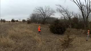 2012 Kansas Pheasant And Quail Hunting At Tallgrass Lodge