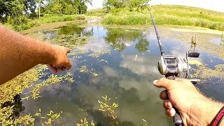 BASS FISHING New Lakes w/ INCREDIBLE Potential!!