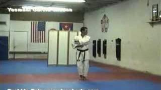 PINAN YODAN Jyoshinmon Shorin Ryu Karate Do