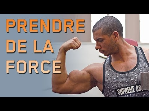 Programme FORCE || MUSCULATION