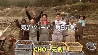 菊芋CM.
