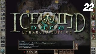 Icewind Dale: Enhanced Edition #22 - Severed Hand