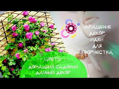 Как украсить балкон цветами Идеи креативного украшения и декора балкона цветами Балкон в цветах свои