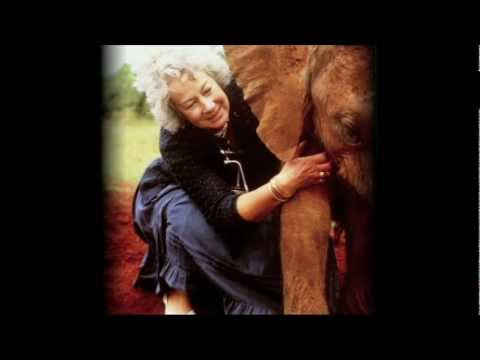 Dame Daphne Sheldrick on Love, Life and Elephants