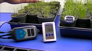 WHY I use SEEDLING HEAT MAT for germination...
