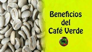 Café Verde - Beneficios y propiedades