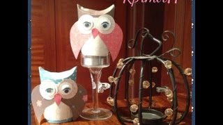Craft Series - DIY Cute Owl Made Out of Empty Toiler Paper Roll