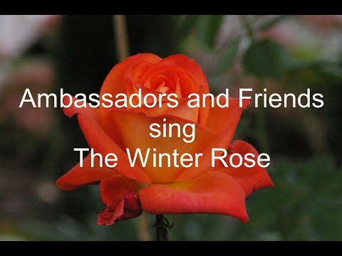 Ambassadors Christian Male Chorus with Alumni and Friends