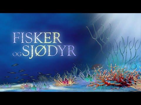 Norsk språk - Fisker og sjødyr