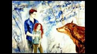 Renesmee Carlie Cullen Drawings